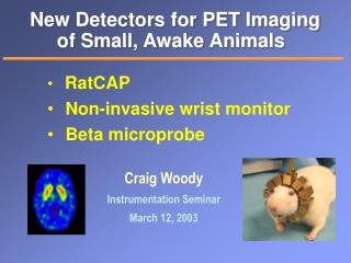New Detectors for PET Imaging of Small, Awake Animals