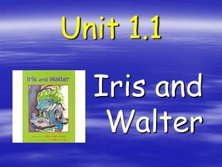 Unit 1.1