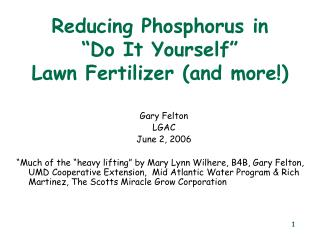 "Reducing Phosphorus in  ""Do It Yourself"" Lawn Fertilizer (and more!)"