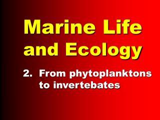 Marine Life and Ecology
