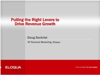 Pulling the Right Levers to  Drive Revenue Growth