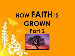 HOW FAITH IS GROWN Part 2
