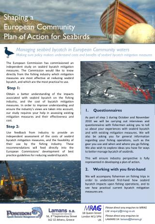 Shaping a European Community  Plan of Action for Seabirds