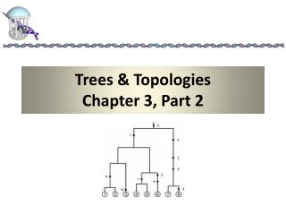 Trees & Topologies Chapter 3, Part 2