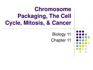 Chromosome Packaging, The Cell Cycle, Mitosis, & Cancer
