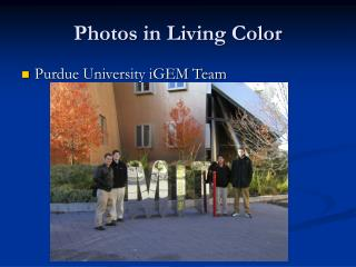 Photos in Living Color
