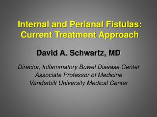 Internal and Perianal Fistulas: Current Treatment Approach