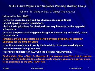 STAR Future Physics and Upgrades Planning Working Group