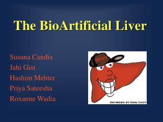 The BioArtificial Liver