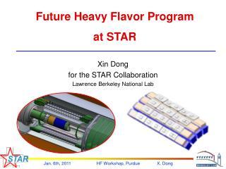 Future Heavy Flavor Program at STAR
