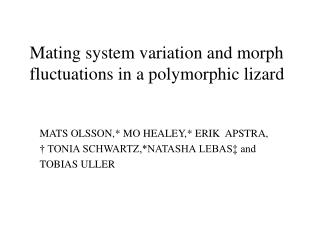 Mating system variation and morph fluctuations in a polymorphic lizard