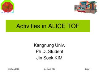 Activities in ALICE TOF