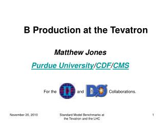 B Production at the Tevatron