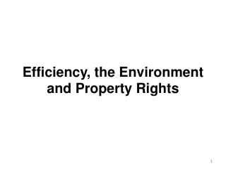Efficiency, the Environment and Property Rights