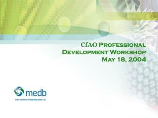 CfAO  Professional Development Workshop May 18, 2004