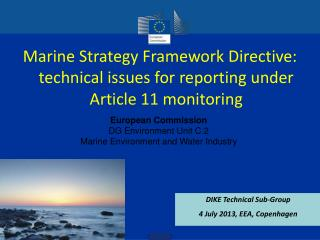 Marine Strategy Framework Directive: technical issues for reporting under Article 11 monitoring