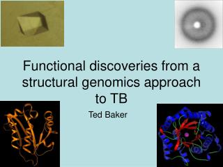 Functional discoveries from a structural genomics approach to TB