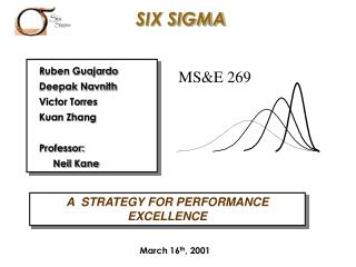 A  STRATEGY FOR PERFORMANCE EXCELLENCE