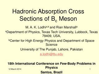 Hadronic Absorption Cross Sections of B c Meson