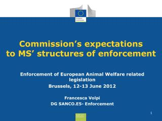 Commission's expectations to MS' structures of enforcement