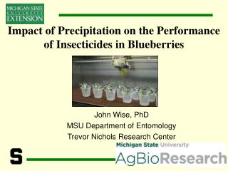 Impact of Precipitation on the Performance of Insecticides in Blueberries