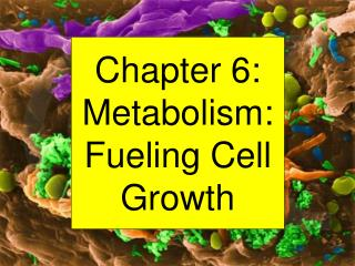 Chapter 6: Metabolism: Fueling Cell Growth