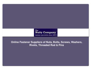 The Nutty Company