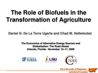 The Role of Biofuels in the Transformation of Agriculture