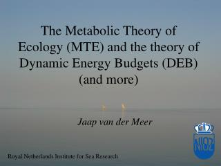 The Metabolic Theory of Ecology (MTE) and the theory of Dynamic Energy Budgets (DEB) (and more)