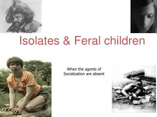 Isolates & Feral children