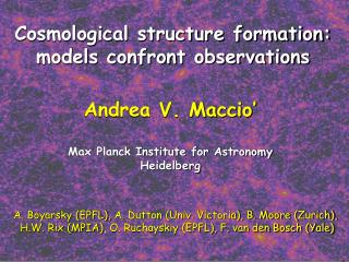 Cosmological structure formation: models confront observations