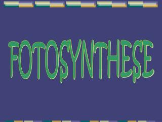 FOTOSYNTHESE