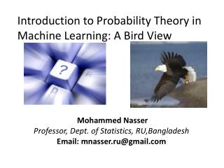 Introduction to Probability Theory in Machine Learning: A Bird View
