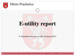 E-utility report