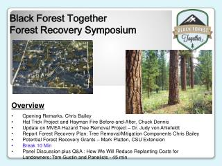 Black Forest Together  Forest Recovery Symposium