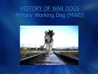 HISTORY OF WAR DOGS Military Working Dog (MWD)