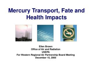 Mercury Transport, Fate and Health Impacts
