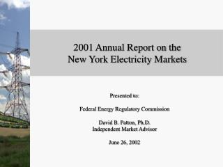 2001 Annual Report on the   New York Electricity Markets