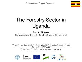 The Forestry Sector in Uganda