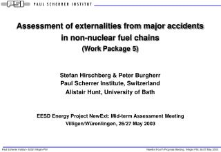 Assessment of externalities from major accidents in non-nuclear fuel chains ( Work  Package 5)