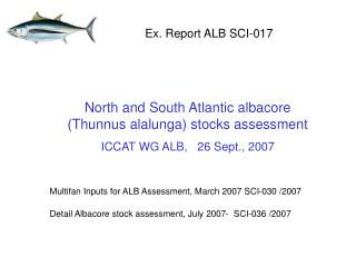 North and South Atlantic albacore (Thunnus alalunga) stocks assessment