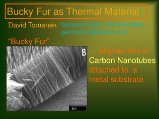 … aligned film of  Carbon Nanotubes  attached to  a metal substrate