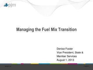 Managing the Fuel Mix Transition