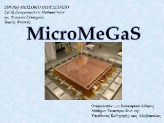MicroMeGaS