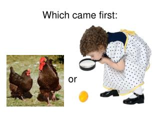 Which came first: