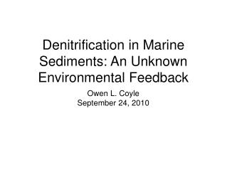 Denitrification in Marine Sediments: An Unknown Environmental Feedback