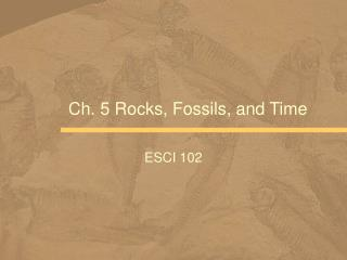 Ch. 5 Rocks, Fossils, and Time