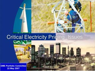 Critical Electricity Pricing  Issues