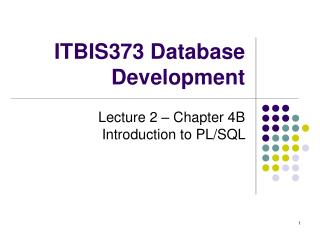 ITBIS373 Database Development