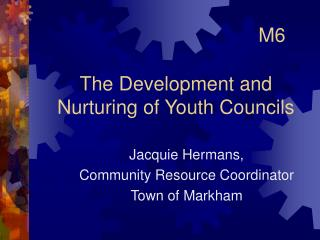 The Development and Nurturing of Youth Councils
